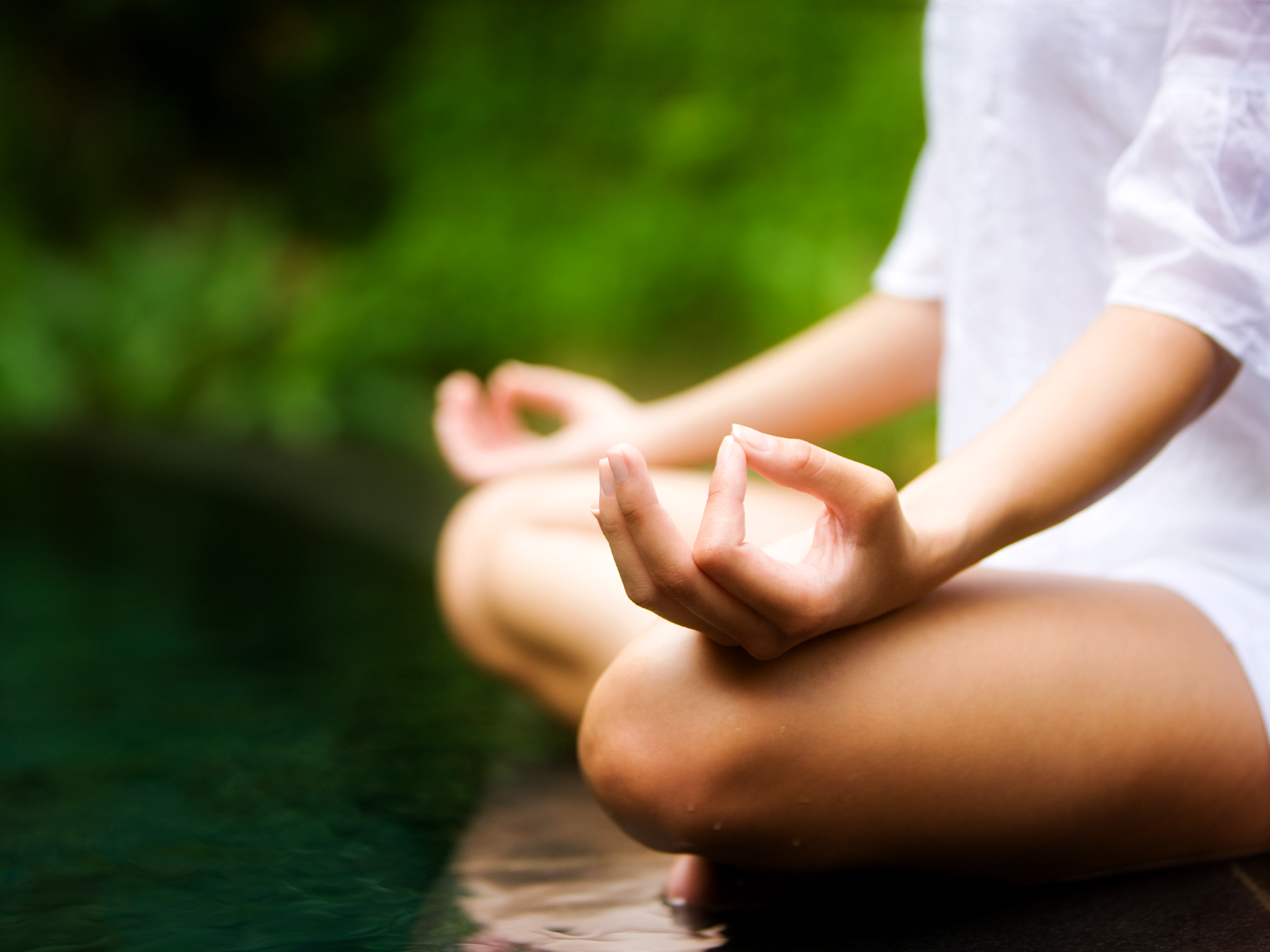 Meditate to Bring Your Mind