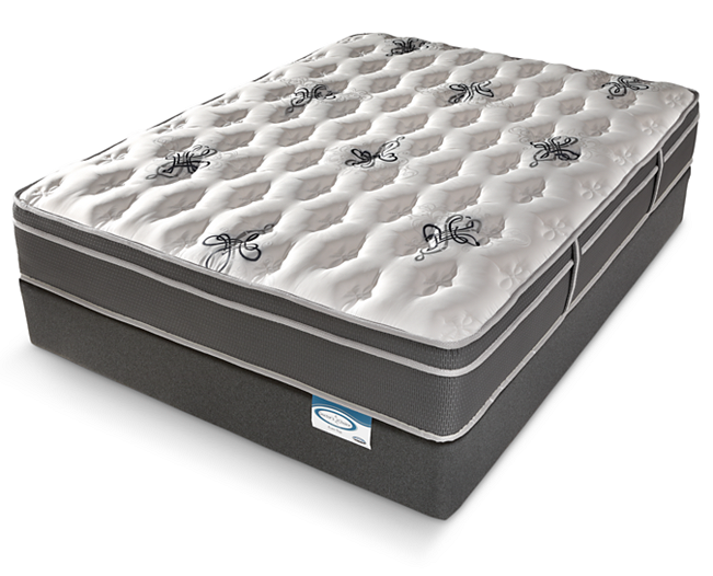 Doctor's Choice Euro Top Mattress